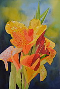 Canna Paintings - Yellow Canna by Cynthia Sexton