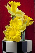 Yellow Flowers Posters - Yellow Daffodils In Checkered Vase Poster by Garry Gay