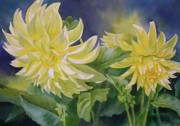 Realistic Watercolor Prints - Yellow Dahlia Duet Print by Sharon Freeman