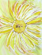 Barbara Pearston - Yellow Daisy Portrait