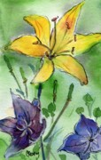 MaryAnn Cleary - Yellow Day Lily with...