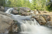 Michigan Waterfalls Prints - Yellow Dog Falls 4234 Print by Michael Peychich