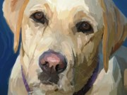 Golden Lab Paintings - Yellow Dog by Patti Siehien