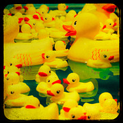 Nikon D80 Prints - Yellow Ducky Game Print by Sonja Quintero