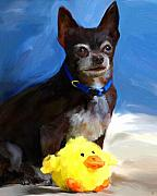 Chihuahua Framed Prints - Yellow Ducky Framed Print by Jai Johnson