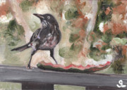 Puerto Rico Paintings - Yellow Eyed Bird by Sarah Lynch