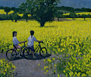 Cyclist Framed Prints - Yellow Field Framed Print by Andrew Macara