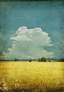 Grass Digital Art Prints - Yellow field on old grunge paper Print by Setsiri Silapasuwanchai