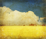 Clouds  Posters - Yellow field Poster by Setsiri Silapasuwanchai