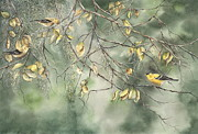 Mary McCullah - Yellow Finch