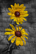 Grafitti Mixed Media - Yellow flower grafitti by Living Waters Photography