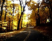Country Road Mixed Media Prints - Yellow Forest Watercolor Print by Spencer McKain