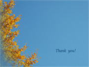 Tree Leaf Posters - Yellow GinkgoThank you Greeting Card Poster by Eena Bo