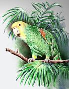 Parrot Metal Prints - Yellow-headed Amazon Parrot Metal Print by Arline Wagner