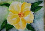 Blacks Painting Posters - Yellow Hibiscus Poster by Jamie Frier