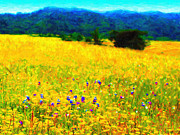Marin County Digital Art Prints - Yellow Hills Print by Wingsdomain Art and Photography