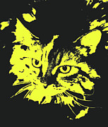 Cherie Duran - Yellow Kitty