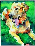 Yellow Lab Paintings - Yellow Labrador by Christy  Freeman