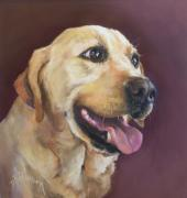 Lab Pastels - Yellow Labrador by Debbie Anderson