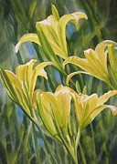 Lilies Painting Framed Prints - Yellow Lilies Framed Print by Sharon Freeman