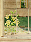 Tan Lily Paintings - Yellow Lillies by Mark McKain