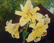 Barbara Smeaton - Yellow Lily Portrait
