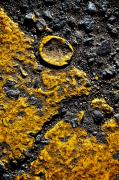 Gravel Road Prints - Yellow Line Print by Ray Laskowitz - Printscapes