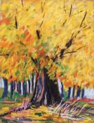 Pennsylvania Drawings - Yellow Maple Wet Trunk by John  Williams