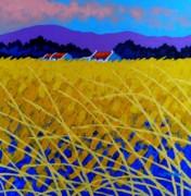 Yellow Meadow Print by John  Nolan