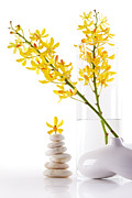 Glass Photo Originals - Yellow Orchid Bunchs by Atiketta Sangasaeng