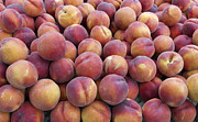 Agronomy Photos - Yellow Peaches by John Trax