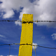 Barbed Wire Fences Photo Prints - Yellow post Print by Bernard Jaubert