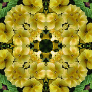 Flower Kaleidoscopes Posters - Yellow Primrose Kaleidoscope Poster by Smilin Eyes  Treasures