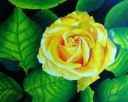 Beautiful Rose Drawings Prints - Yellow Print by Ramneek Narang