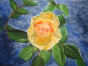 Roses Pastels Framed Prints - Yellow Rose Framed Print by Bridget Dixon