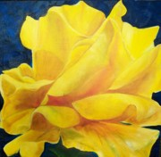 Dana Redfern - Yellow Rose