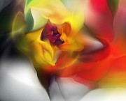Contemporary - Yellow Rose Fantasy by David Lane