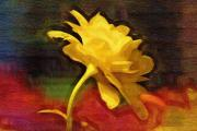 Colors Digital Art Originals - Yellow Rose by Holly Ethan