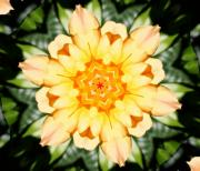 Kaleidoscope Posters - Yellow Rose Kaleidoscope  Poster by Cathie Tyler
