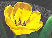 Barrel Paintings - Yellow Tulip by Catherine G McElroy