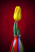 Floral Prints - Yellow Tulip In Colorfdul Vase Print by Garry Gay