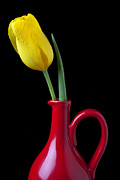 Pitchers Posters - Yellow tulip in red pitcher Poster by Garry Gay