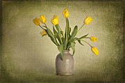 Heather Swan - Yellow Tulips in Clay Pot
