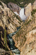 The Grand Canyon Of The Yellowstone Prints - Yellowstone Falls from Artists Point Print by Greg Nyquist