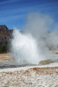 Geyser Prints - Yellowstone Features  Print by Michael Peychich
