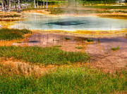 Vent Posters - Yellowstone Geyser Poster by Steven Ainsworth