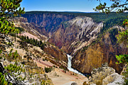 Yellowstone National Park Posters - Yellowstone Grand Canyon North Rim View Poster by Greg Norrell