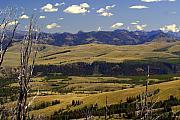 Yellowstone Landscape 2 Print by Marty Koch