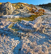 Yellowstone National Park - Mammoth Hot Springs - 02 Print by Gregory Dyer