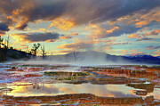 Reflection In Water Prints - Yellowstone National Park-mammoth Hot Springs Print by Kevin McNeal
